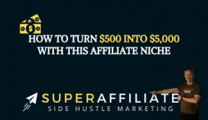 How to Turn $500 into $5,000 with This Affiliate Niche