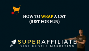 Just for Fun in Affiliate Marketing
