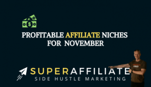 Profitable Niches for Affiliate marketing in November